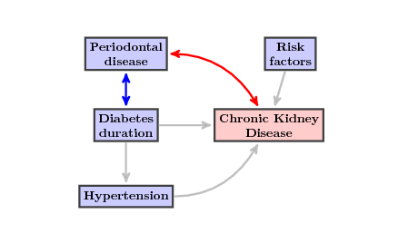 Path modeling of chronic kidney disease